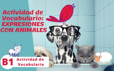 Expresiones con animales (B1)